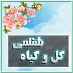 بانک اطلاعات گل ها