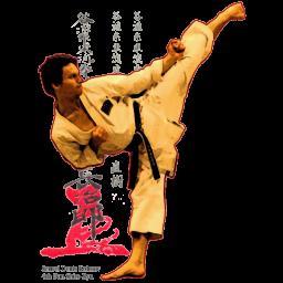 اموزش کیوکوشین کاراته
