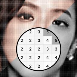 Kpop Pixel Art-Blackpink Coloring by Number