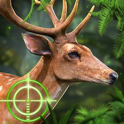 Deer Hunt : Animal Hunting Games. Hunter & Shooter
