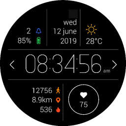Primary Watch Face