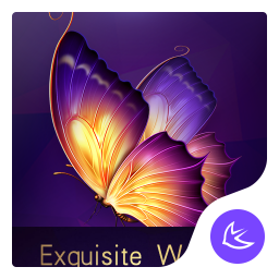 Exquisite Purple theme for Android free