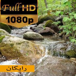 زمینه متحرک لاویچ FULL HD (رایگان)