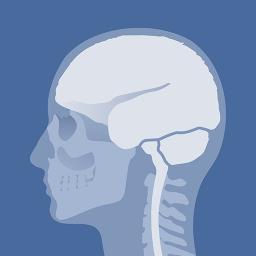 Head Atlas