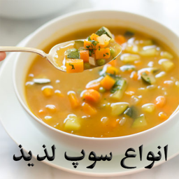تهیه انواع سوپ با فیلم