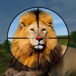 Wild Hunter: Jungle Animal Hunting Shooting Games