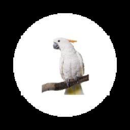 پرندگان پولساز