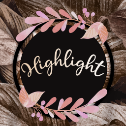 Story Highlights Cover Maker