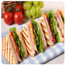 انواع ساندویچ فوری