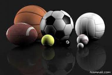 آموزش حرفه ای ورزش