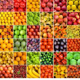 دایره المعارف میوه ها