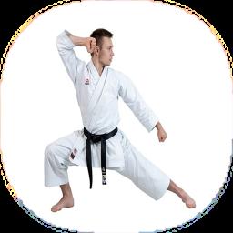 نکات و آموزش کاراته