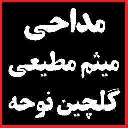 مداحی میثم مطیعی / گلچین نوحه