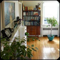 آپارتمان پر از گیاه