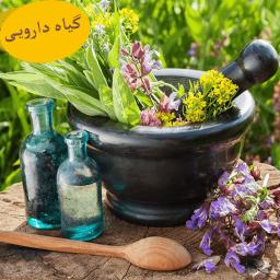 کتاب خواص گیاهان دارویی طب سنتی کامل