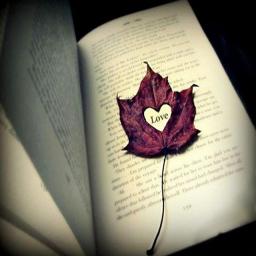 رمانهای احساسی و عاشقانه