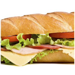ساندویچ های خوشمزه