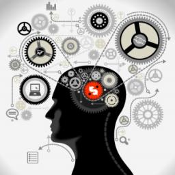 تست هوش و روانشناسی تصویری