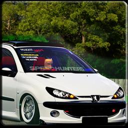 206 Driving Simulator