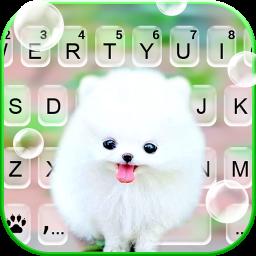 Fluffy Cute Dog Keyboard Background