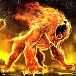 Lion Wallpaper HD & 4K