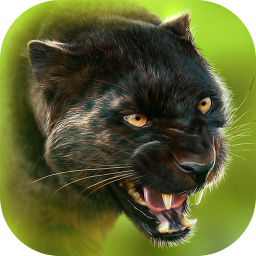 Panther Online