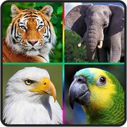 صدای پرندگان، حیوانات و حشرات