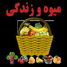 میوه و زندگی