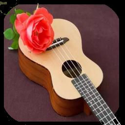 آموزش حرفه ای گیتار