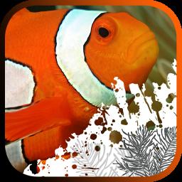 آموزش نگهداری ماهی های آکواریومی