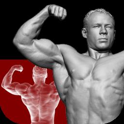 تمرینات بدنسازی برای تمام اعضای بدن