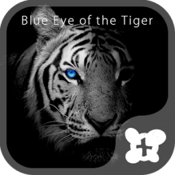 Theme -Blue Eye of the Tiger-