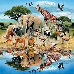 آموزش صدای حیوانات