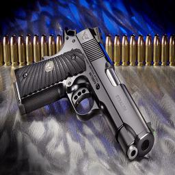 بانک اسلحه