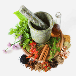 داروخانه گیاهان دارویی