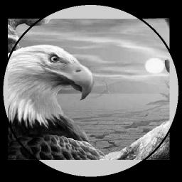 پرورش پرندگان خانگی(اصلی)