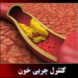 کنترل چربی خون