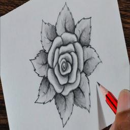 آموزش گام به گام نقاشی گل ها