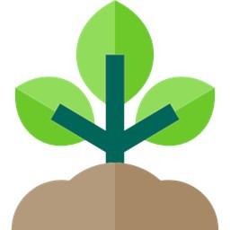 طب سبز(خود درمانی گیاهی)