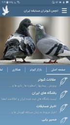 کبوتر مسابقه - Pigeon Racing