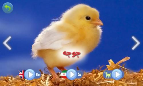 اسکرین شات بازی صدای حیوانات ( آموزش کودکان ) 2