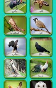 اسکرین شات بازی صدای حیوانات 3