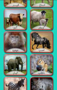 اسکرین شات بازی صدای حیوانات 2