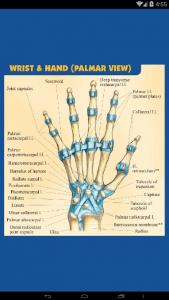 اسکرین شات برنامه آناتومی جامع بدن انسان 8
