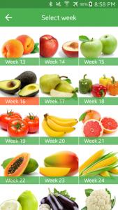 اسکرین شات برنامه Pregnancy Week By Week 7