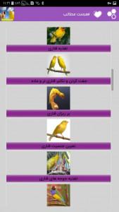 اسکرین شات برنامه صدای قناری ، آواز و پرورش قناری 2