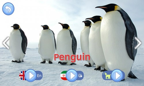 اسکرین شات بازی صدای حیوانات ( آموزش کودکان ) 7