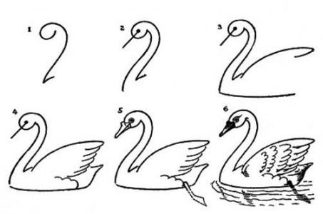 اسکرین شات برنامه آموزش نقاشی به زبان ساده 11