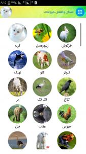 اسکرین شات برنامه صدای واقعی حیوانات 1
