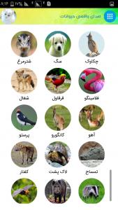 اسکرین شات برنامه صدای واقعی حیوانات 5